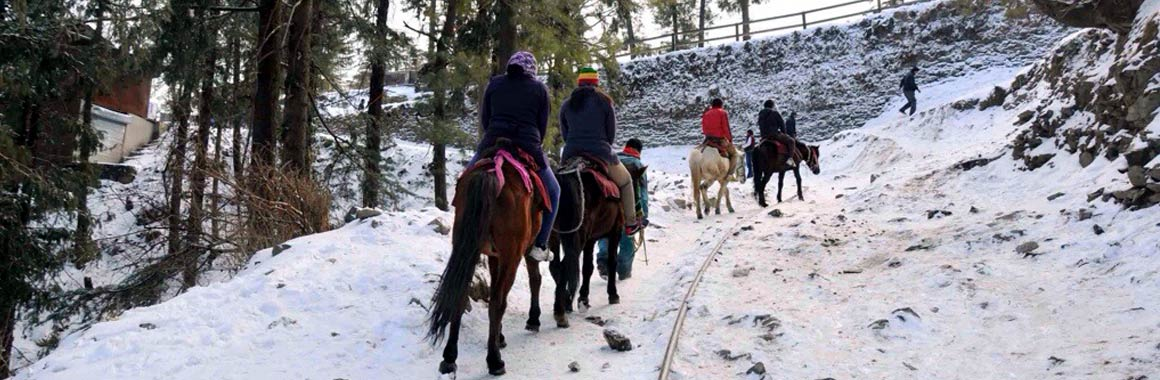 delhi manali shimla tour package by cab from delhi